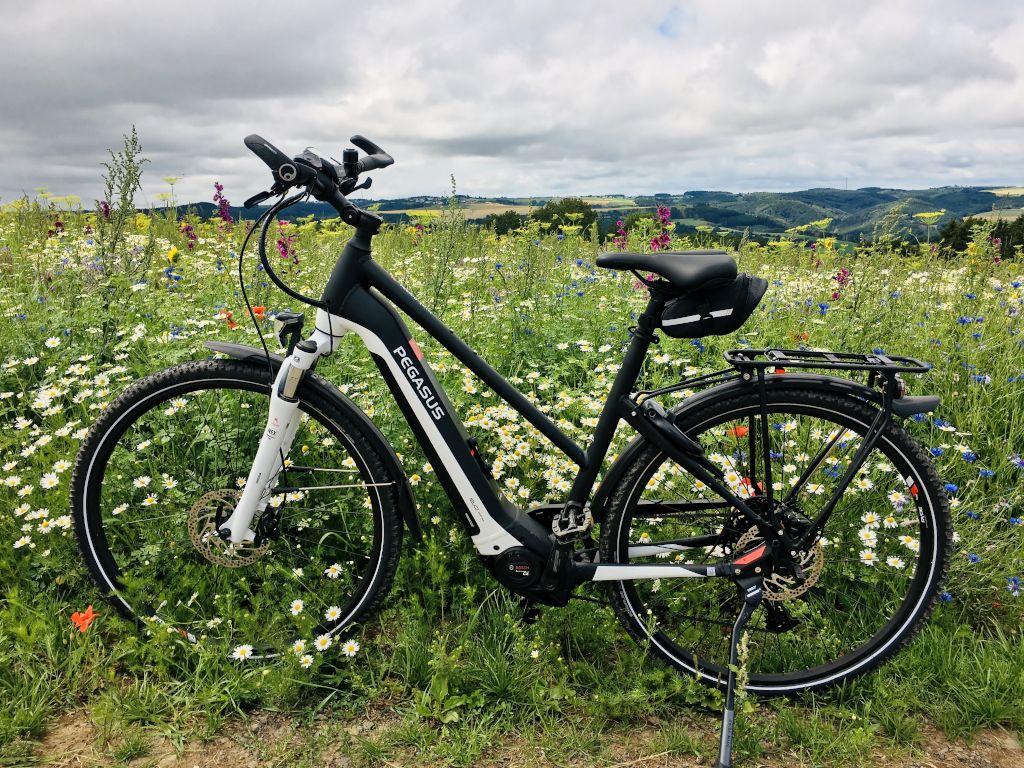 E-Bike PEGASUS Premio EVO 12 Lite Cross